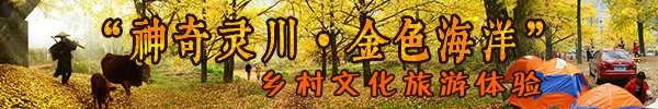 """图文直播:""""神奇灵川·金色海洋""""乡村文化旅游"""