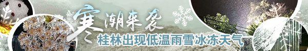 直播回顾:冷冷冷!桂林寒潮强势来袭,部分高寒地区最低温度-7℃