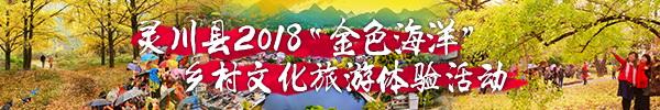 直播回顾:桂林今天最黄的地方竟然隐藏在这里,又黄又美一如童话世界!