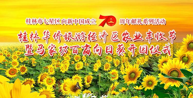 直播回顾:田野变成了金色海洋!七星区百亩葵花开园迎客