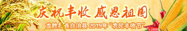 直播回顾:金色稻浪惊艳亮相!龙胜再迎一个重大节日!