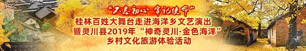 直播预告:海洋银杏节,美女和你邀约三生三世百里金黄!