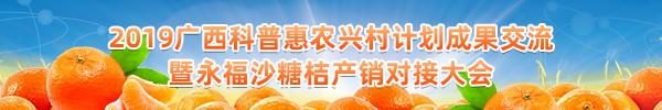 直播回顾:永福沙糖桔产销大会来啦!全国百名网红还将主播